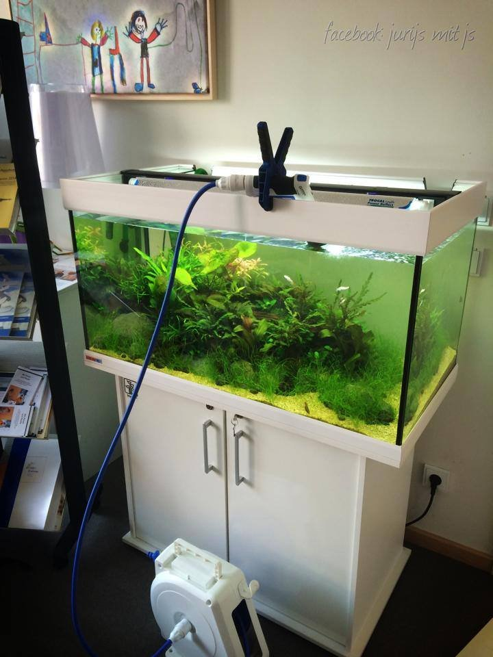 Click image for larger version  Name:water change tools.jpg Views:104 Size:76.0 KB ID:20395